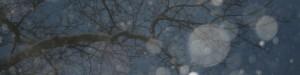 cropped-snow3.jpg