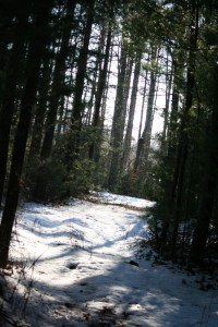 winterpath2